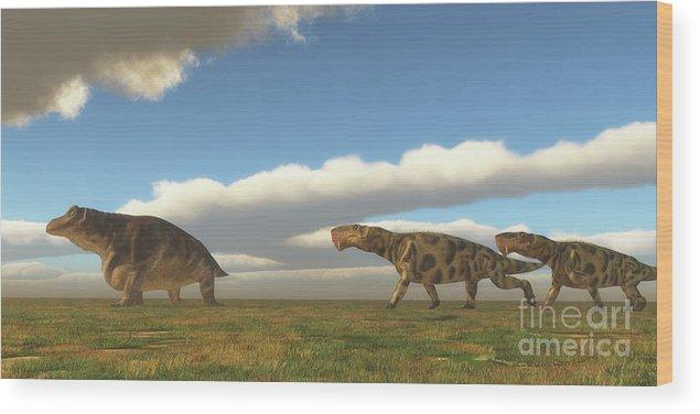 Inostrancevia Wood Print featuring the digital art Permian Inostrancevia Hunts Keratocephalus by Corey Ford