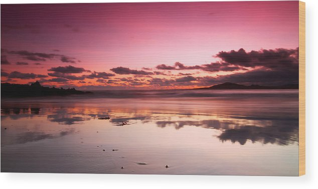 Galapagos Wood Print featuring the photograph Pink Reflections by Andre Distel