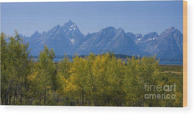 Teton Wood Print featuring the photograph Teton Range by Idaho Scenic Images Linda Lantzy