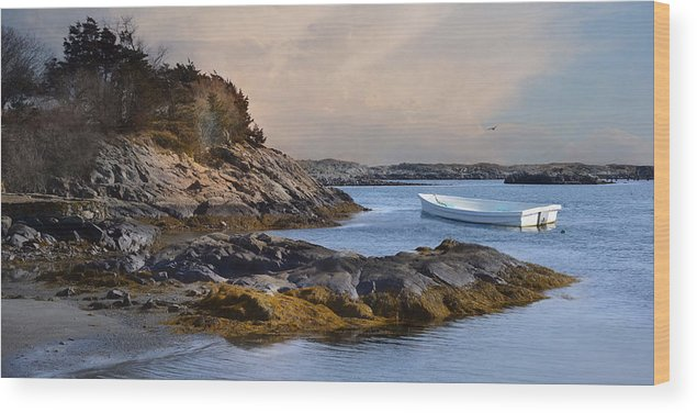 Boat Wood Print featuring the photograph Tide Line by Robin-Lee Vieira