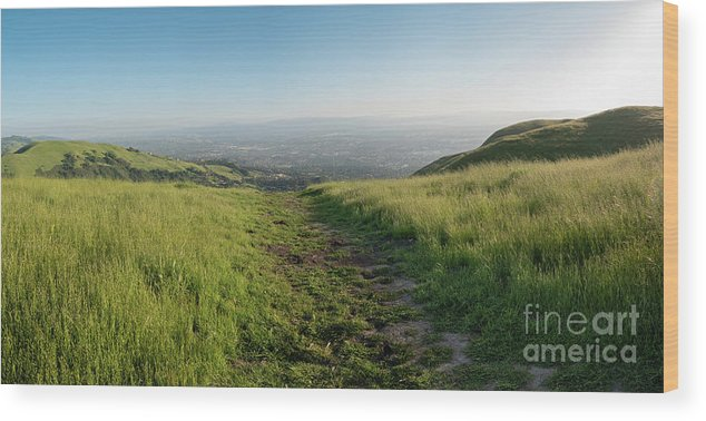California Wood Print featuring the photograph Walking Downhill Large Trail With Silicon Valley At The End by PorqueNo Studios