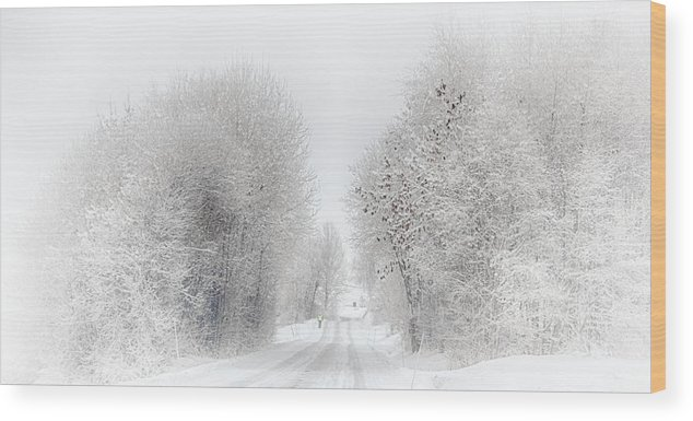 Road Wood Print featuring the photograph My Way Home by Laila Karlsen
