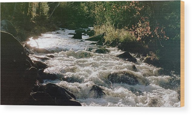 Brook Wood Print featuring the photograph Cooper Brook by Hollie Cyr