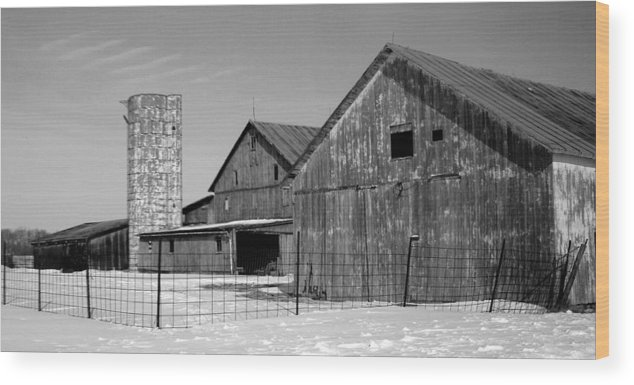 Barn Wood Print featuring the photograph 020309-74 by Mike Davis