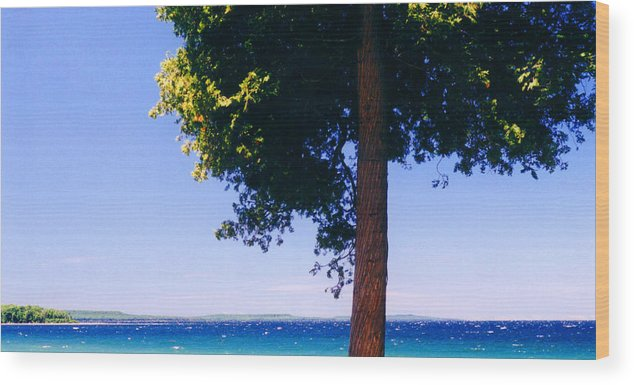 Landscape Wood Print featuring the photograph Tree By The Lake 3 by Lyle Crump