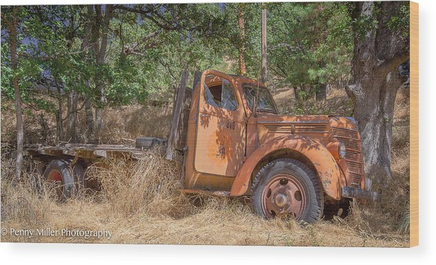Wood Print featuring the photograph Old Orange by Penny Miller