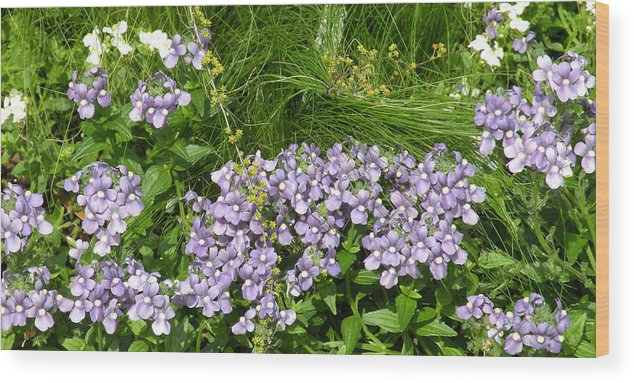 Flowers Wood Print featuring the photograph Purple Wall by Gregory Letts