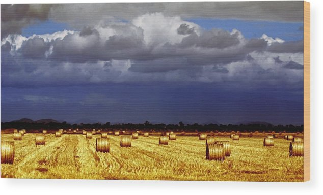 Landscape Wood Print featuring the photograph Rolling On by Holly Kempe