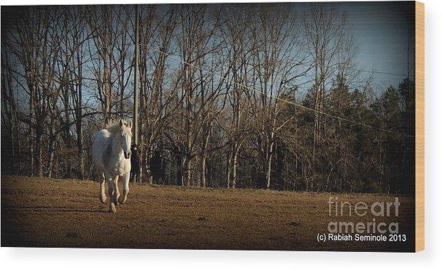 Horse Wood Print featuring the photograph Hi by Rabiah Seminole
