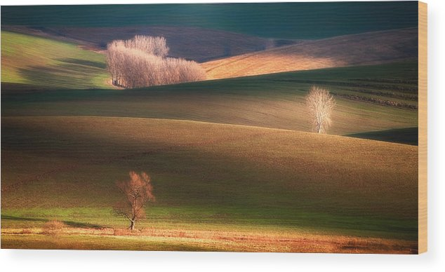 Landscape Wood Print featuring the photograph Painted By The Light by