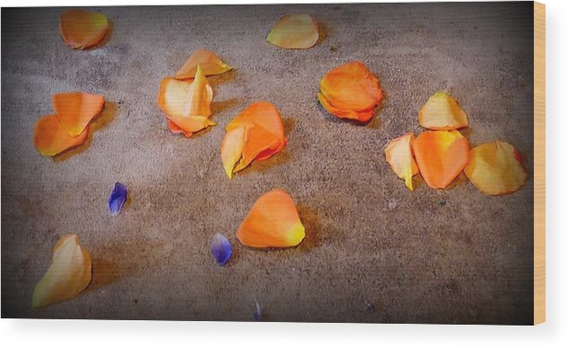 Nature Wood Print featuring the photograph Petals by Olga Breslav