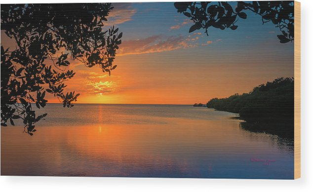 Florida Wood Print featuring the photograph Just Beyond The Window by Marvin Spates