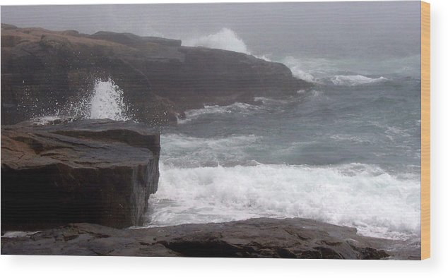 Waves Wood Print featuring the photograph Schoodic Point by Lisa Kane
