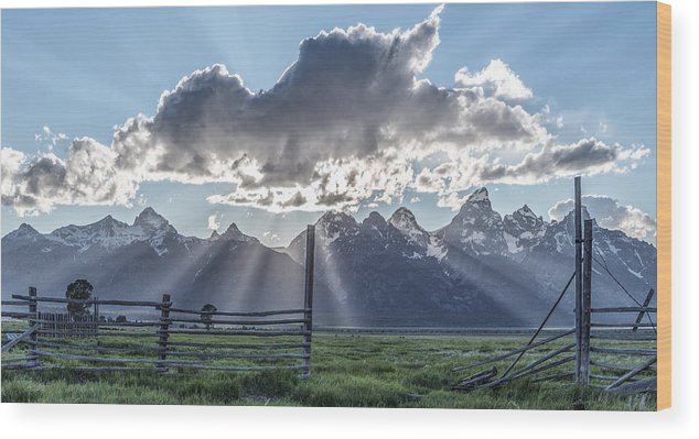 Horizontal Wood Print featuring the photograph On The Fence by Jon Glaser