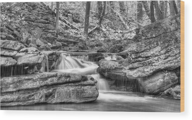 Winter Wood Print featuring the photograph Escapes by JC Findley