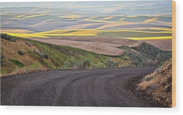 Roads Wood Print featuring the photograph Country Road by Steve McKinzie