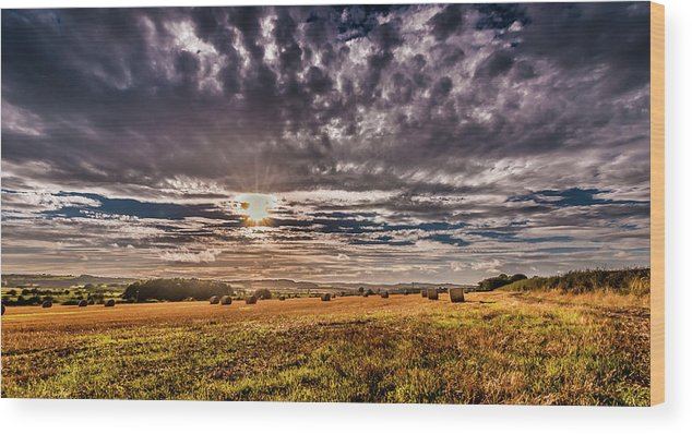 Northumberland Sky Drama Wood Print featuring the photograph Fields Of Plenty by Naylors Photography