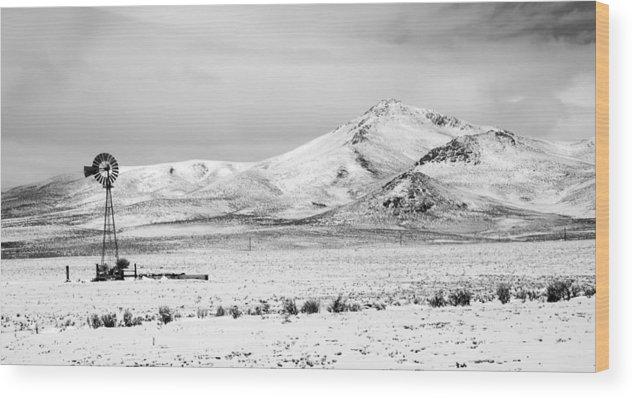 Great Wood Print featuring the photograph Great Basin by Alasdair Turner