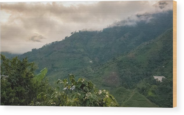 Colombia Wood Print featuring the photograph Misty Valley Near Cajamarca Colombia by Adam Rainoff