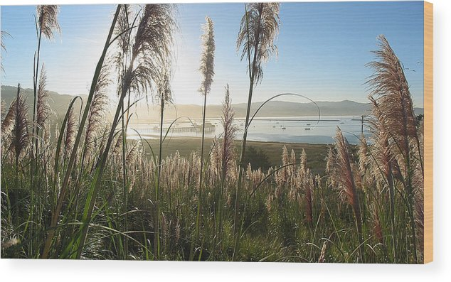 Harbor Wood Print featuring the photograph Princeton Harbor. California by Bob Bennett