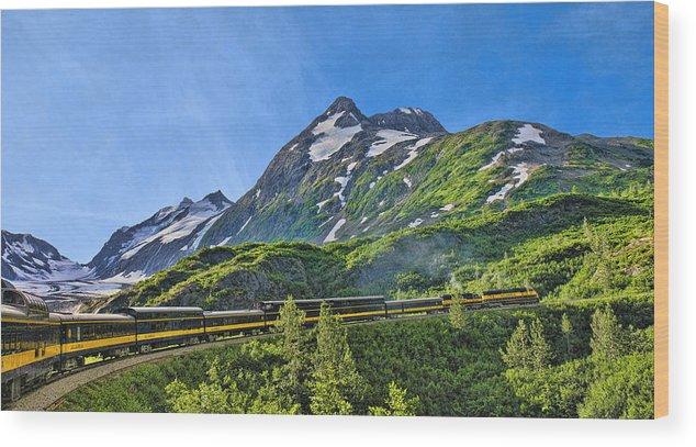 Alaska Wood Print featuring the photograph Alaska Railroad To Denali by Betty Eich