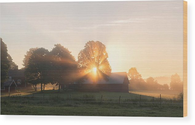 Countryside Wood Print featuring the photograph Morning Has Broken by Christian Lindsten