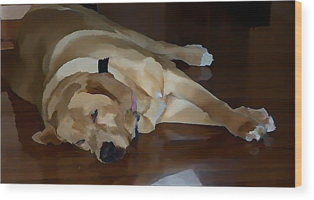 Dogs Wood Print featuring the photograph Sleeping Bandit by Stephanie Kendall