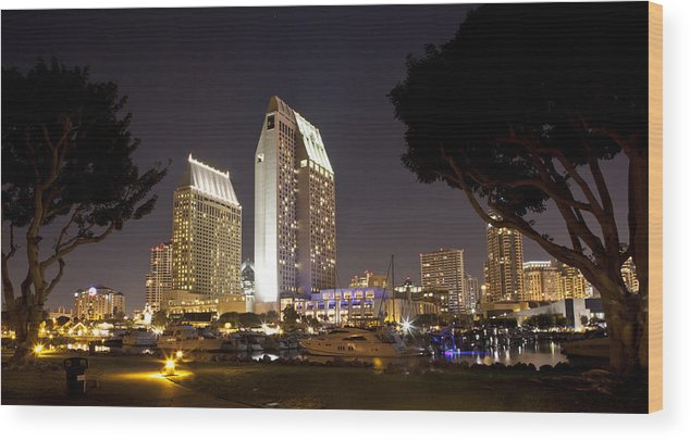 Hotels Wood Print featuring the photograph Waterfront Hotels At Night by Joe Darin