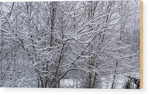 Trees Wood Print featuring the photograph Winter Storm by David Neace