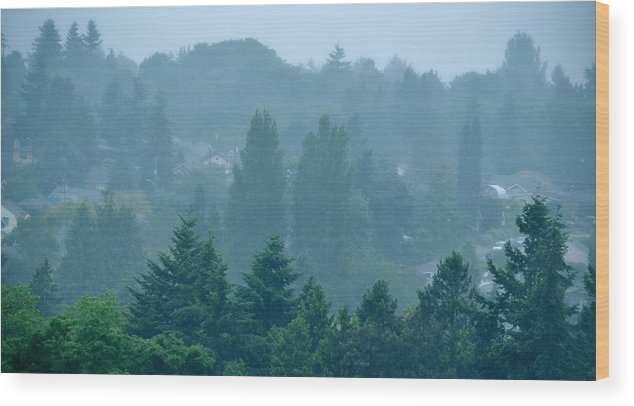 Morning Wood Print featuring the photograph Seattle Morning Fog by Ami Tirana