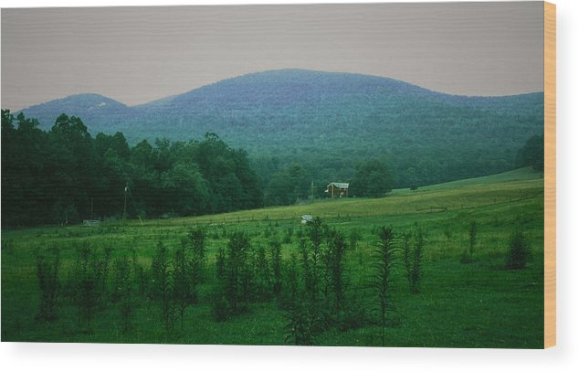 Farm Wood Print featuring the photograph 061207-17 by Mike Davis