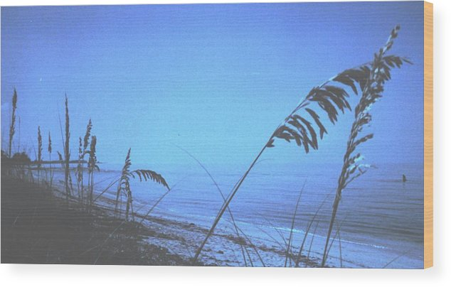 Wood Print featuring the photograph Bahama Blue by Ian MacDonald