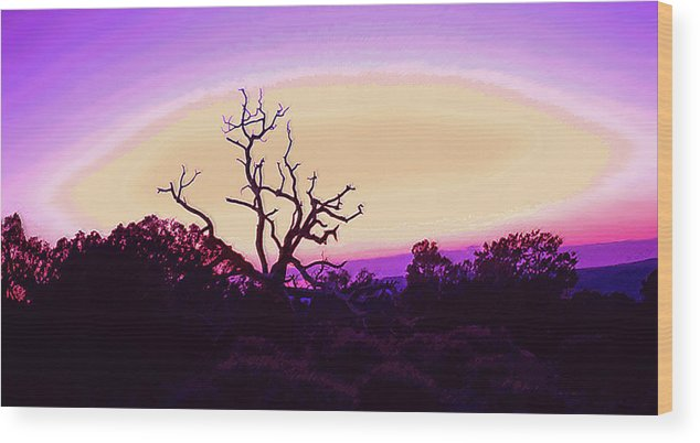 Desert Wood Print featuring the photograph Desert Sunset With Silhouetted Tree 2 by Steve Ohlsen