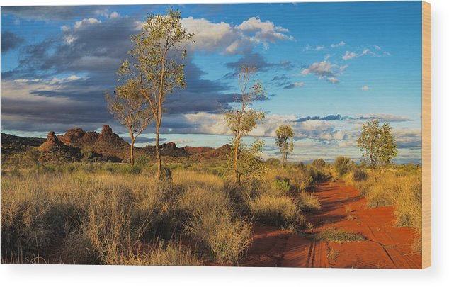 Central Wood Print featuring the photograph Desert Track by Chris Tangey