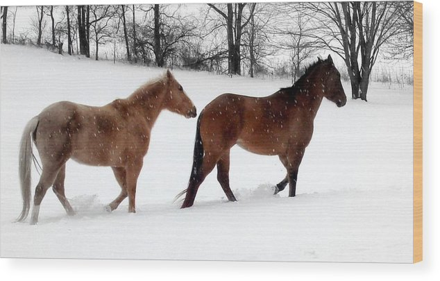 Horse Wood Print featuring the photograph Hestar I Snjo by Scot Johnson