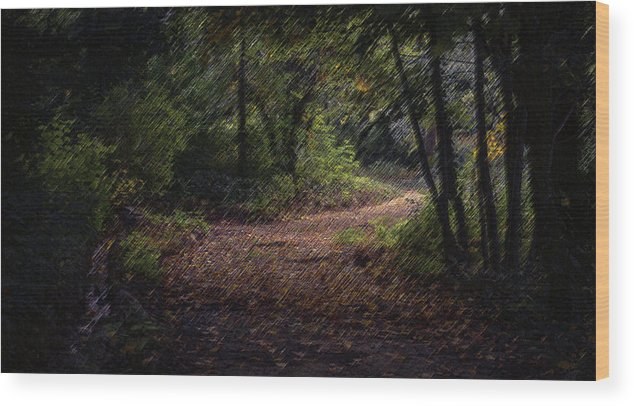 Forest Wood Print featuring the digital art The Long Road by CR Beaumont