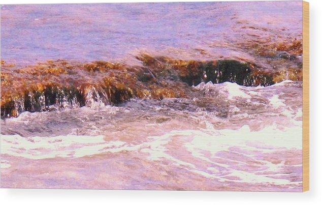 Tide Wood Print featuring the photograph Tidal Pool by Ian MacDonald