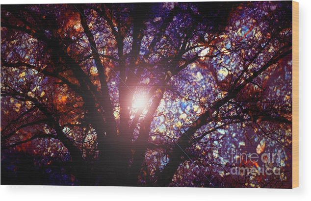 Imagine Wood Print featuring the photograph Imagine by Gayle Price Thomas