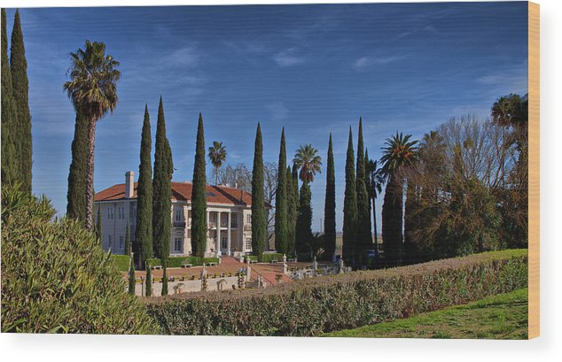 Mansion Wood Print featuring the photograph Mansion by Joe Fernandez