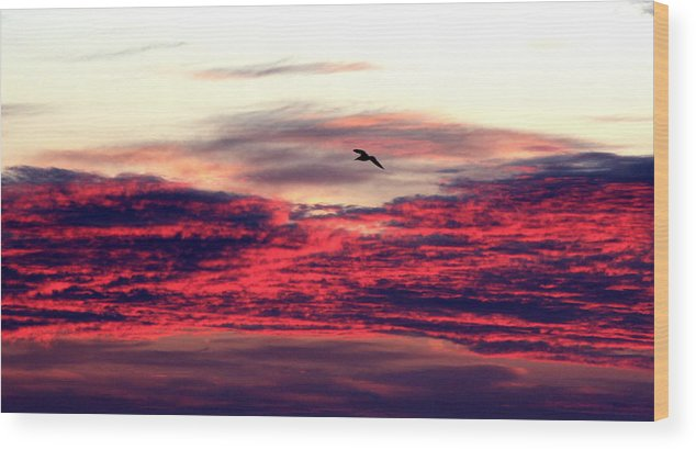Sun Rise Wood Print featuring the photograph Textured Clouds by Rand Wall