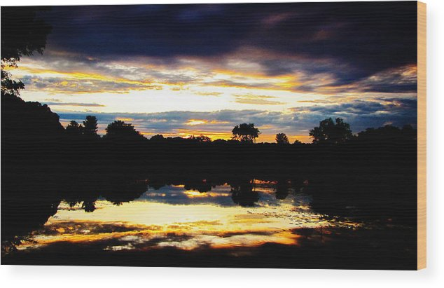 Landscape Wood Print featuring the photograph The Setting Sun On A Wisconsin Marsh by Ron Tackett