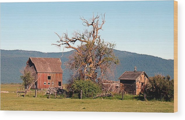 Barn Wood Print featuring the photograph Rustic Old Homestead by Nick Kloepping