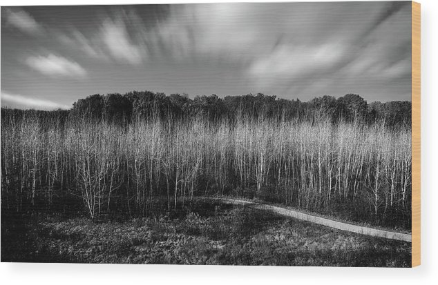 Fallen Timbers Wood Print featuring the photograph Fallen Timbers Battlefield by Chris Fleming
