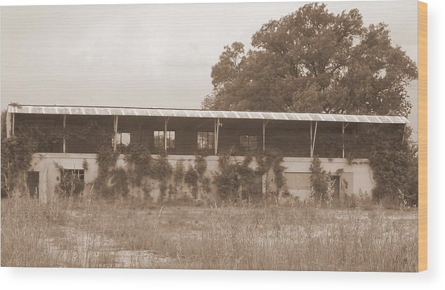 Old Race Track Wood Print featuring the photograph No More Race Days by Michael Lambert