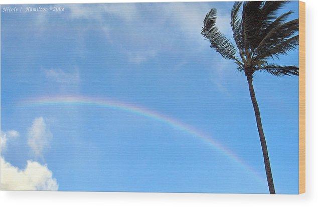 Palm Tree Wood Print featuring the photograph Rainbow Palm by Nicole I Hamilton