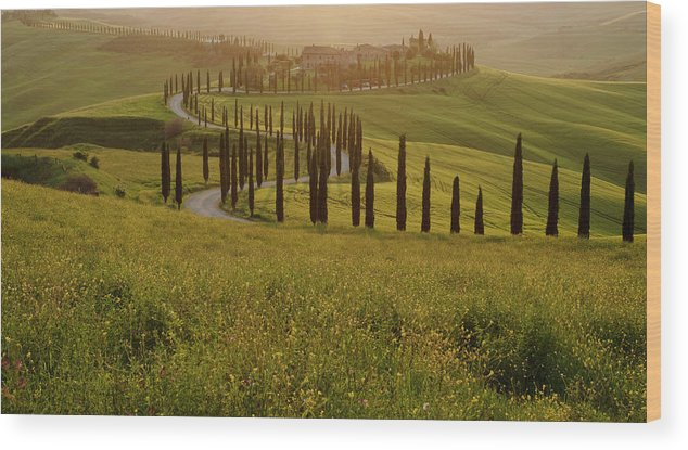 2018 Wood Print featuring the photograph Tuscan Sunset by Jenni Alexander