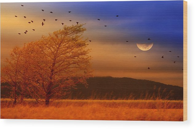 Landscape Wood Print featuring the photograph Against The Wind by Holly Kempe
