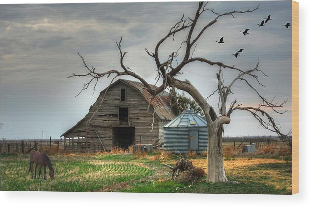 Horse Wood Print featuring the digital art Beauty And The Geese by Sharon Batdorf