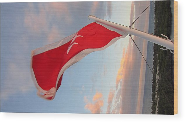 Cruise Wood Print featuring the photograph Caribbean Cruise - On Board Ship - 121211 by DC Photographer