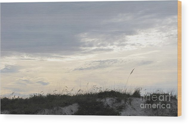 Beach Wood Print featuring the photograph Dunes At Dusk II by Gayle Melges